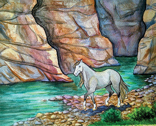 Gray horse walking by river